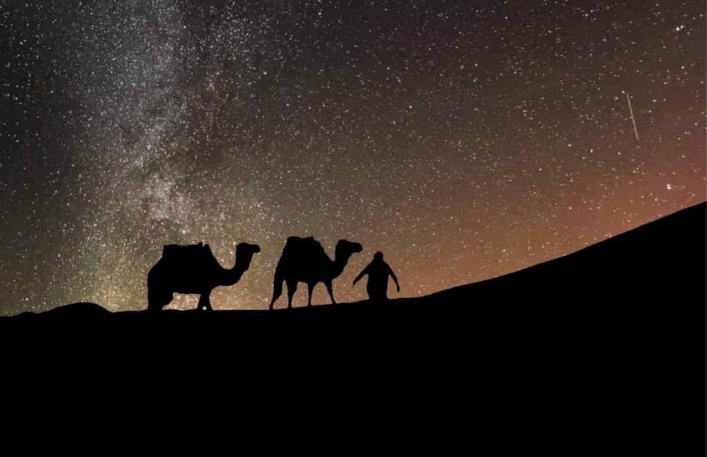 Dunes night