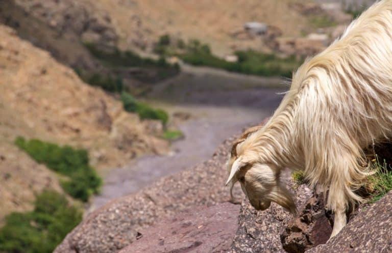 Imlil Toubkal Morocco