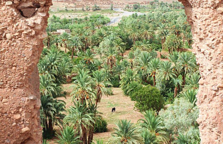 Agdez Morocco