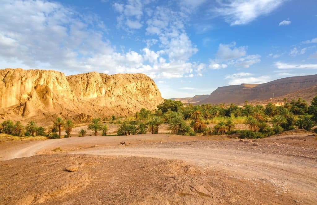 Fint Oasis in Ouarzazate Morocco