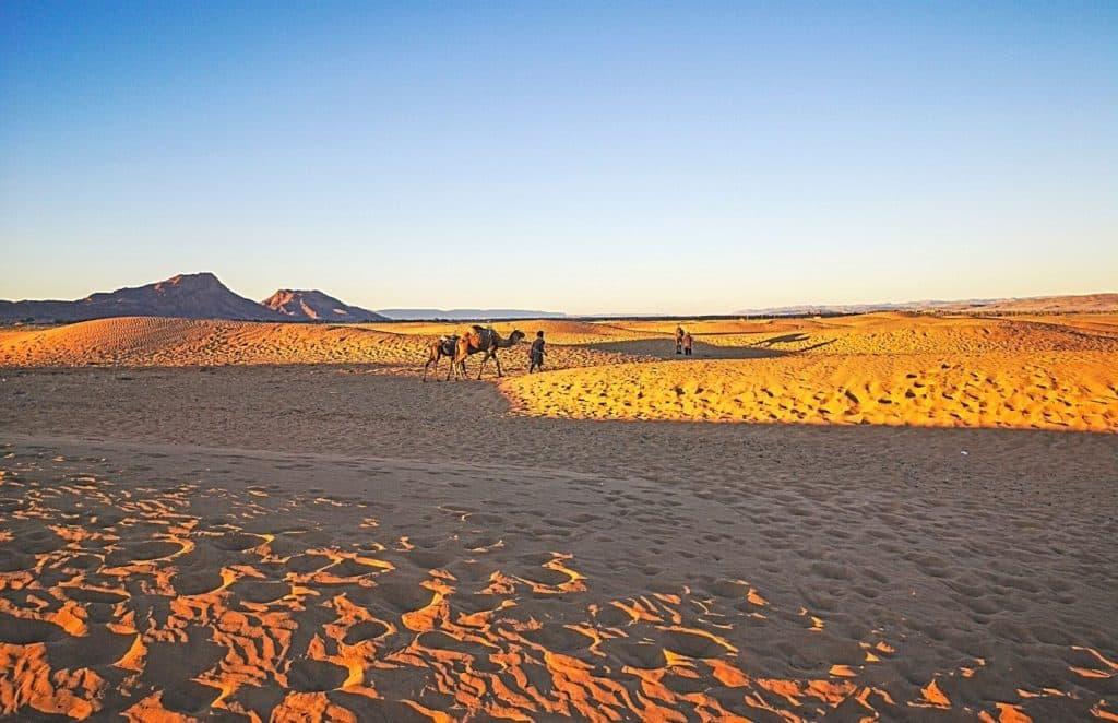 Zagora desert Morocco